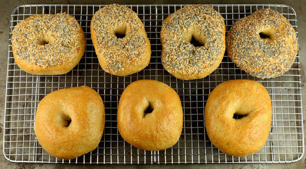 Homemade Plain & Everything Bagels Recipe