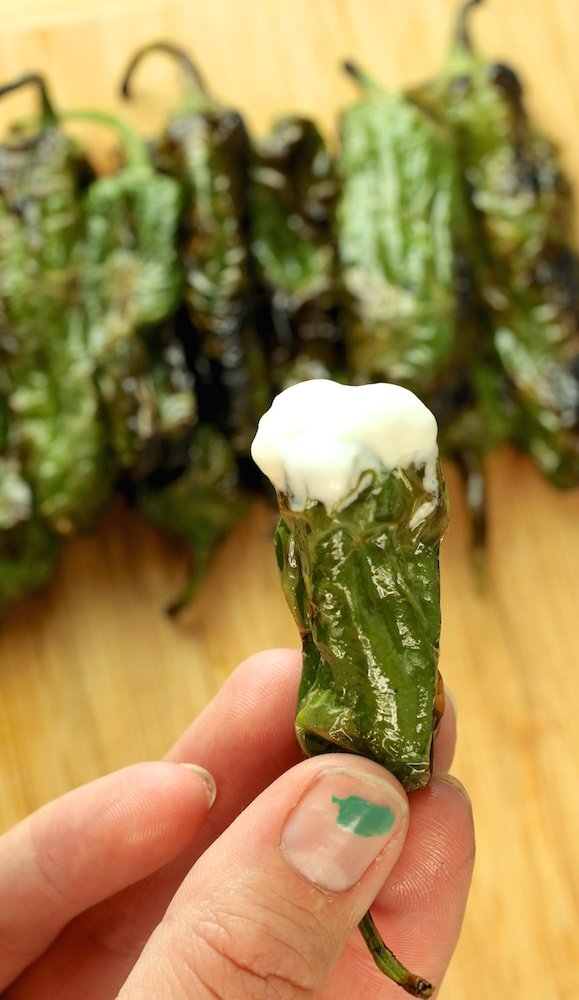 A hand holds up a blistered shishito pepper that's been dipped in whipped lemon goat cheese.