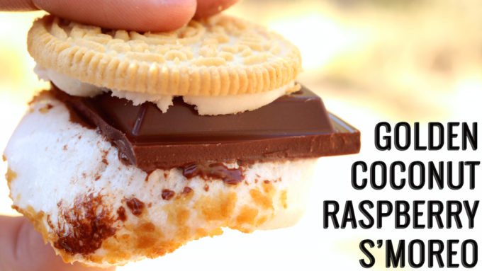 Golden Coconut Raspberry S'moreo