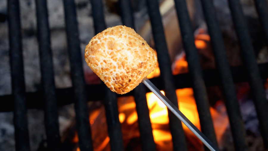 A coconut covered marshmallow being roasted over a campfire.