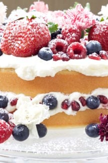 Naked Champagne Cake Recipe