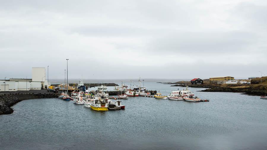 View from Við Voginn Djipivogur restaurant in Iceland.