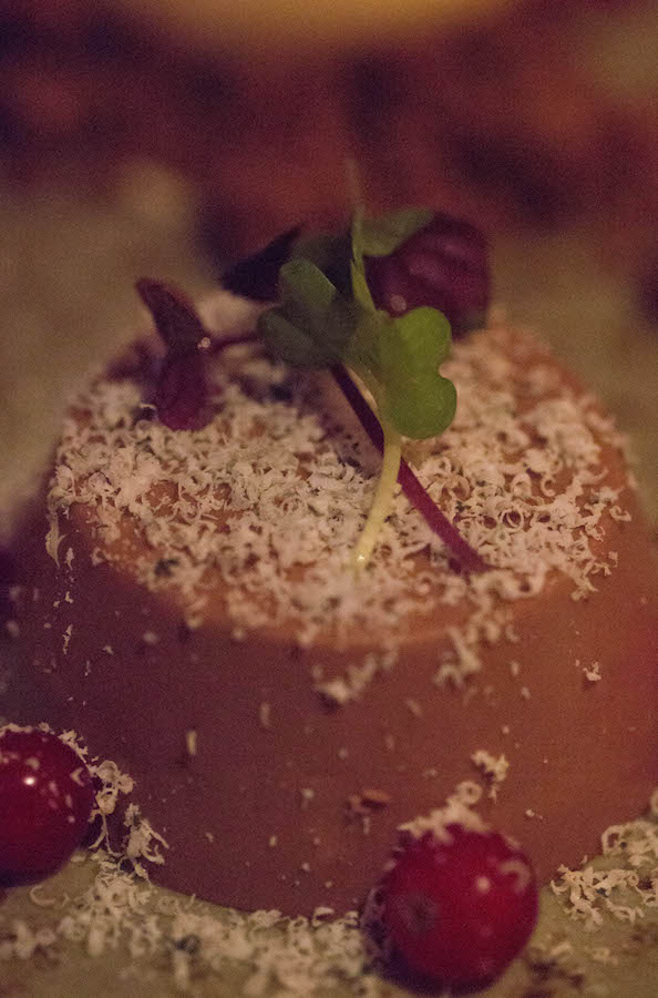 Chocolate Mousse with Blue Cheese Shavings and Red Currants - Hotel Ranga - Where To Eat Iceland