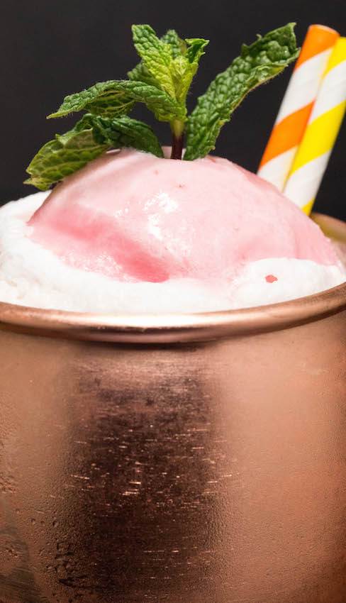 Moscow Mule Float Recipe with Blood Orange & Meyer Lemons