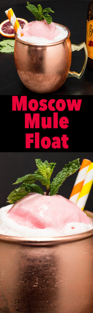 Moscow Mule Float Recipe with Blood Orange & Meyer Lemon Sherbet