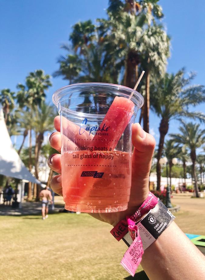 Coachella Food & Drinks - Wine Popsicles in Sparkling Rosé