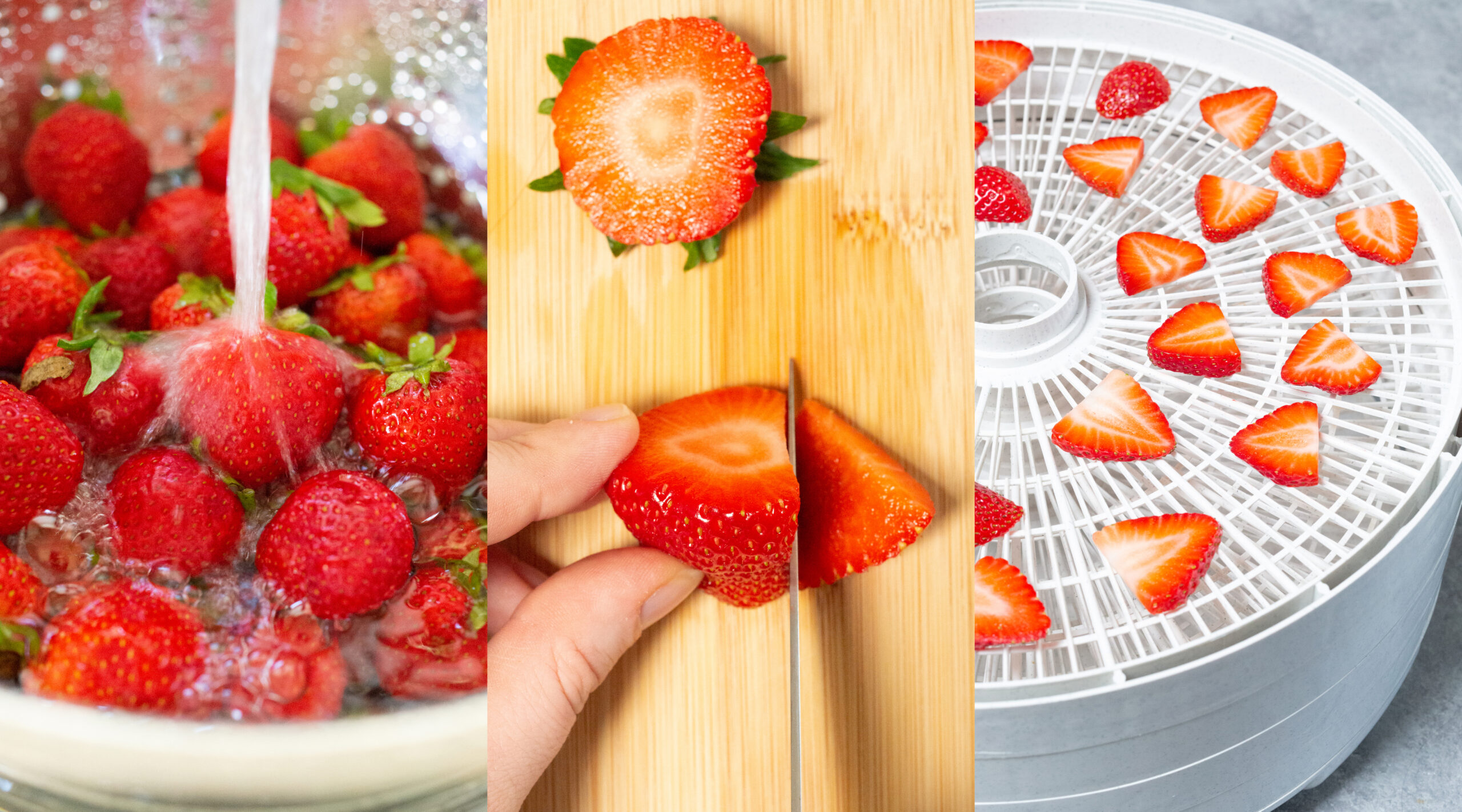 A collage of three photos. The first one shows fresh strawberries being rinsed, the second is a strawberry with its top cut off being sliced, and the third is fresh strawberry slices in a dehdyrator.
