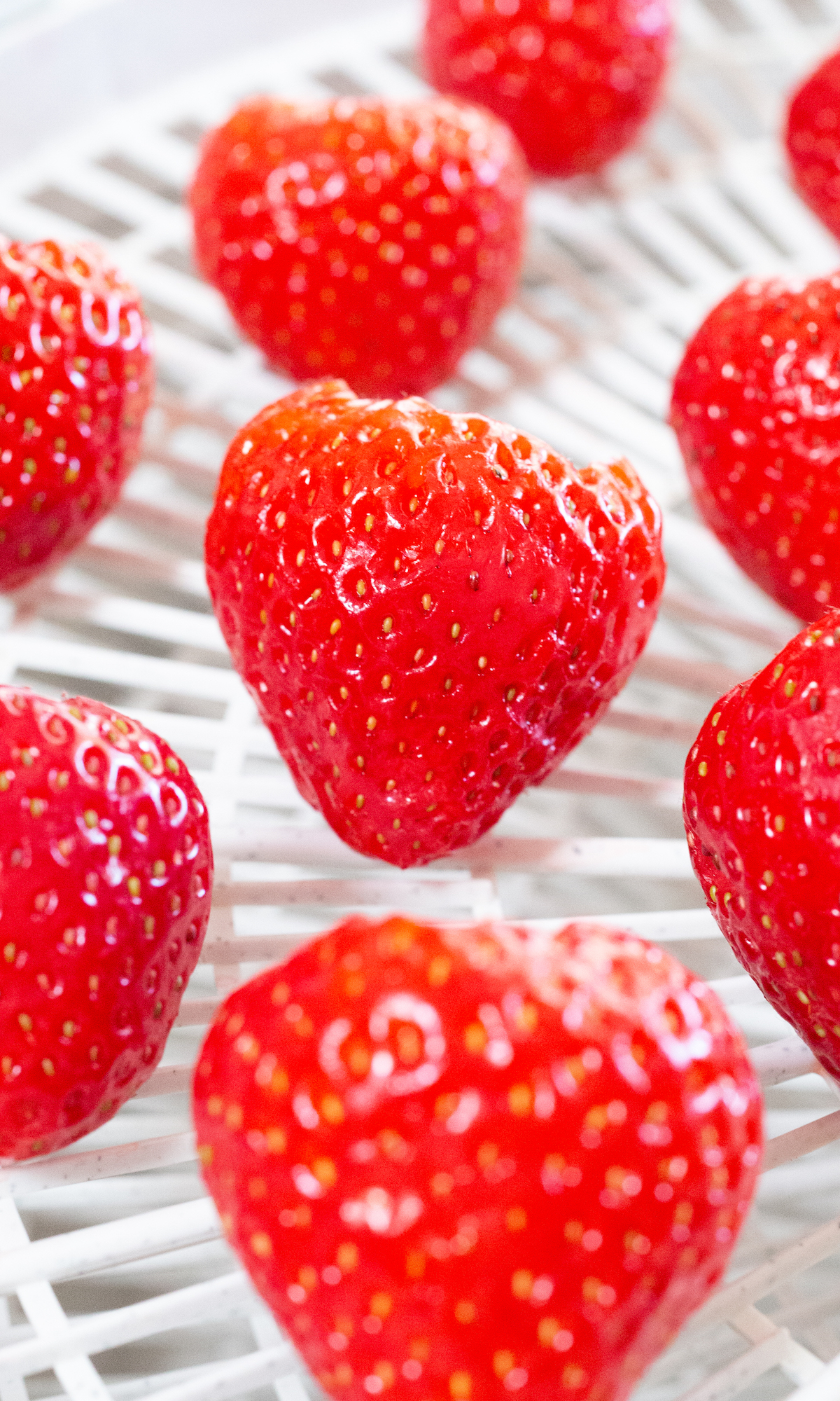 A dehydrated tray is filled with bright red whole strawberries